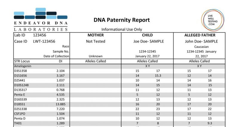 Endeavor Paternity DNA report