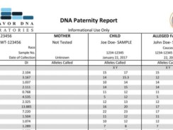 Endeavor Paternity DNA Test