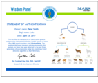 Wisdom Panel 4.0 Canine DNA Test
