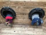 Paternity USA – Twin Zygosity DNA Test